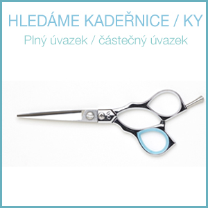 Jste Kadeřník? here are our offers for professional hairdressers.